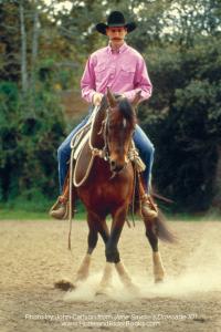 Dressage101-horseandriderbooks