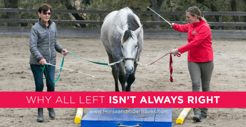 WhyAllLeftIsn'tRight-horseandriderbooks