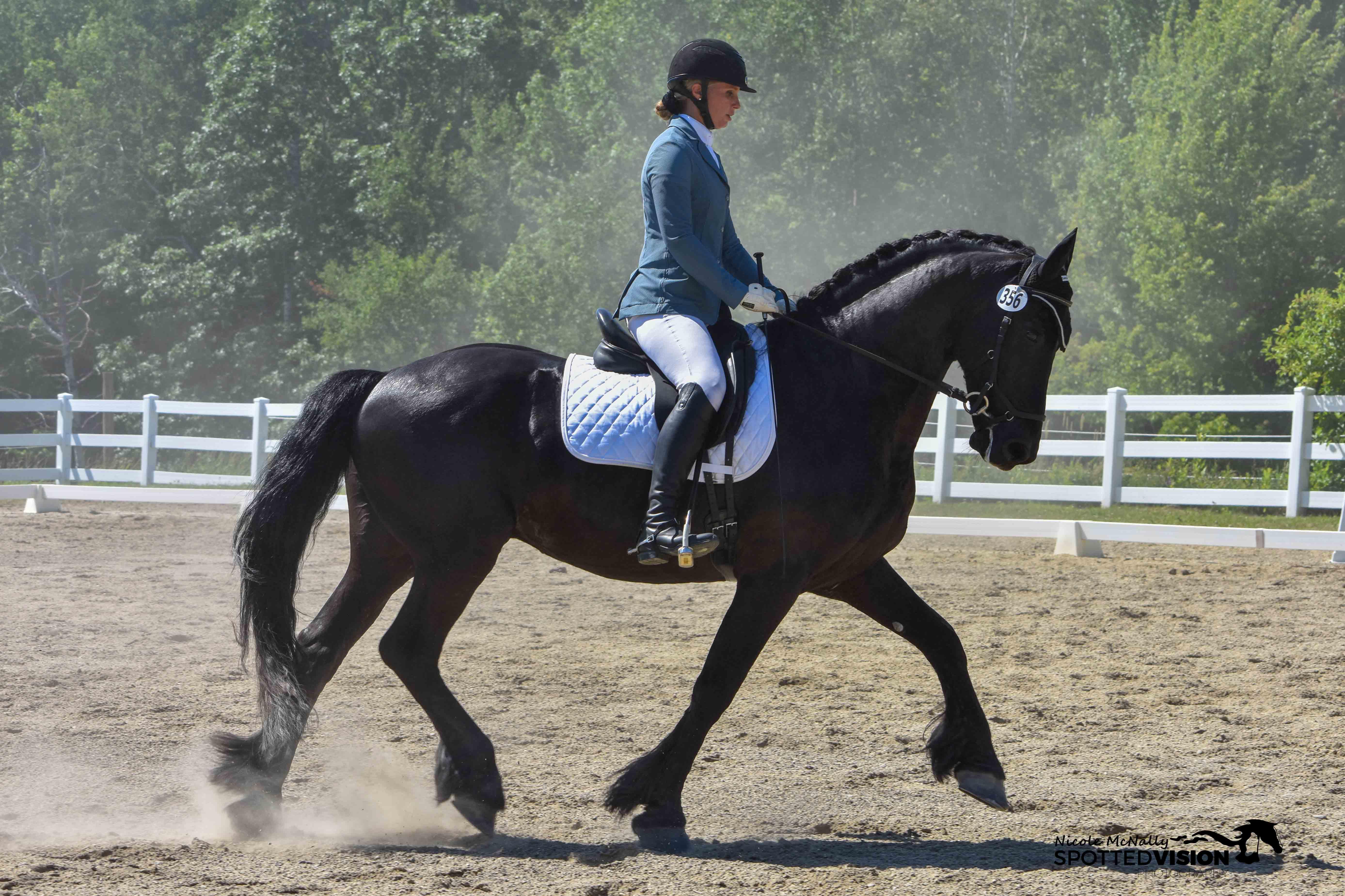FreestyleTheBook-horseandriderbooks
