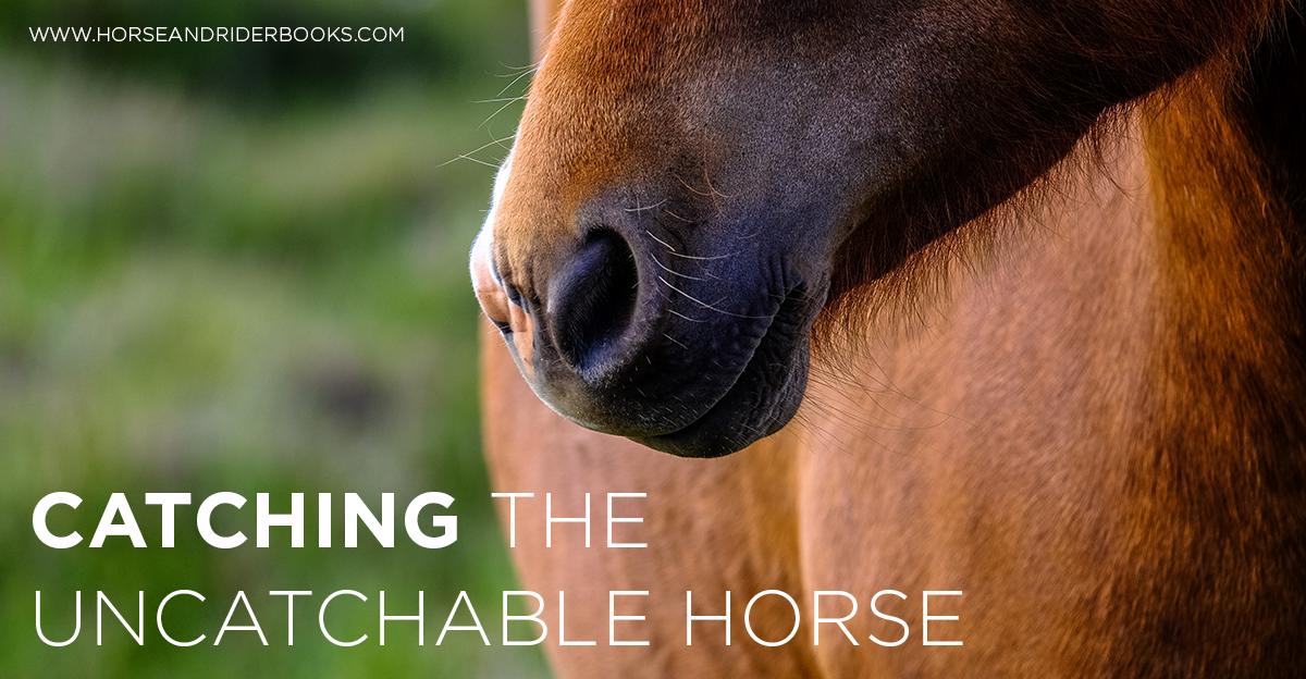 CatchingtheUncatchableHorse-horseandriderbooks