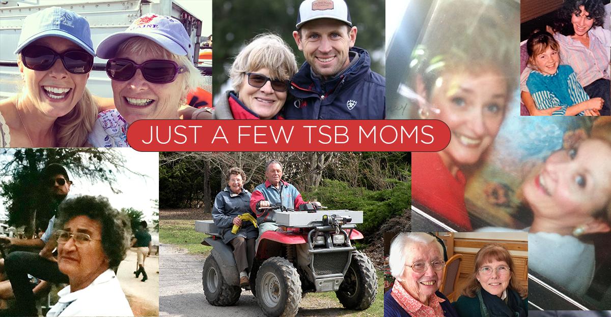 TSBMOMS-horseandriderbooks