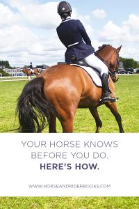 YourHorseKnowsPin-horseandriderbooks