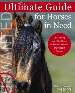 Ultimate Guide to Horses in Need